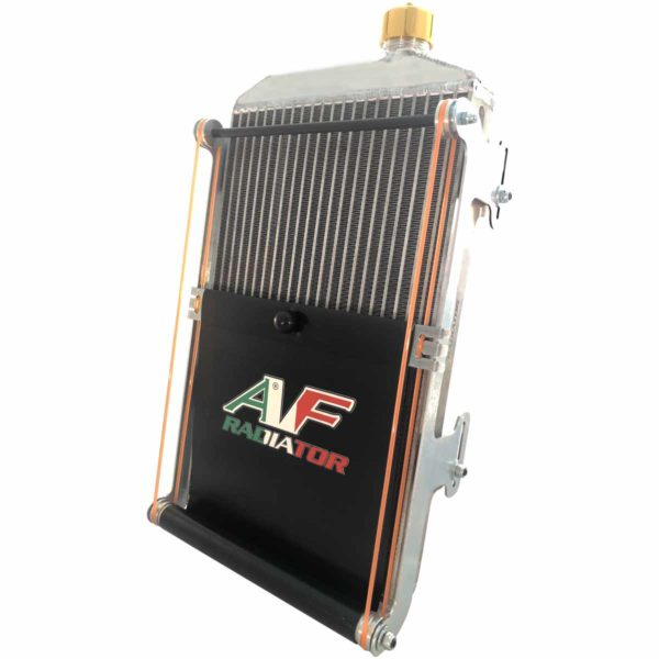 radiatore go kart gold tendina +45